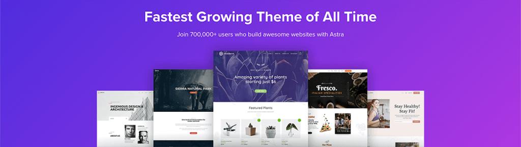 Astra Online Cursus theme WordPress